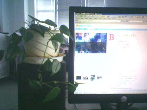 綠化辦公室