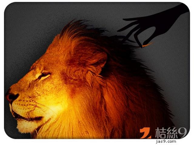 傳說拔到獅子的鬃毛