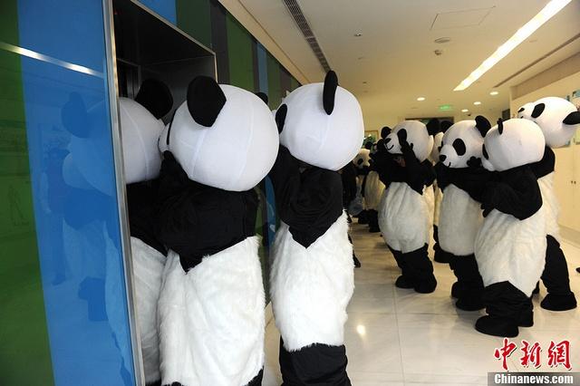熊貓上班族
