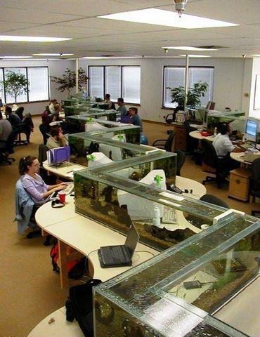 OA辦公屏風,辦公家具